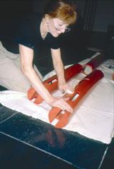 Roberta Working on  Nezu